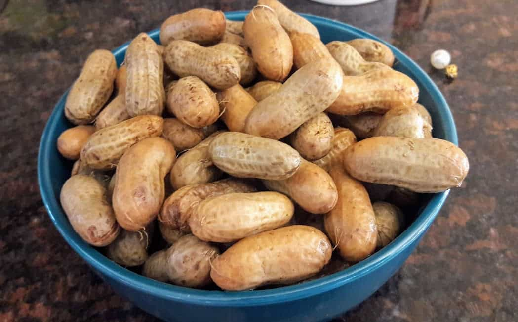 Boiled Peanuts In InstantPot