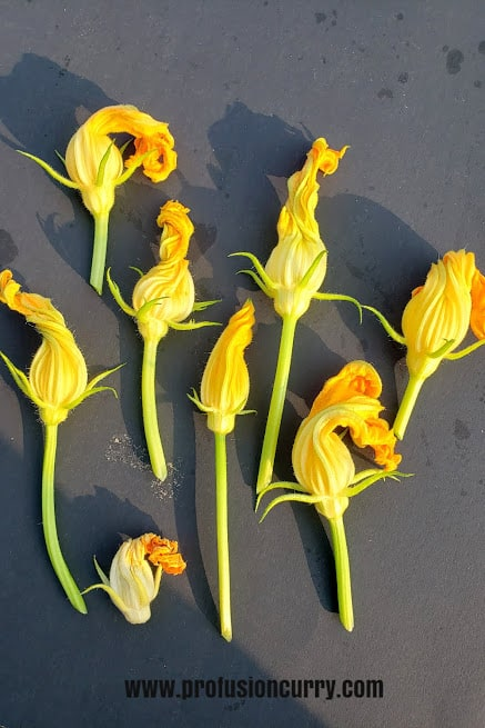 freshly picked zucchini flowers